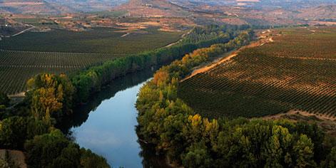 Paisaje de un valle con río